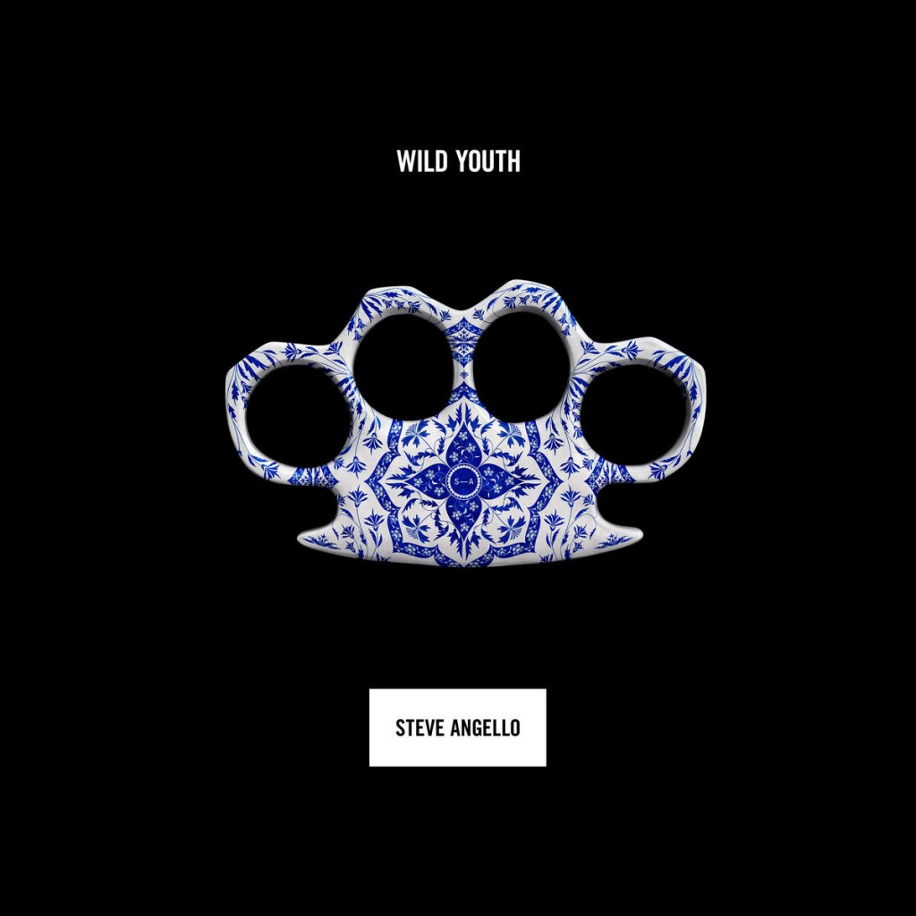 steve-angello-wild-youth