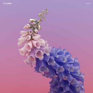 Flume Skin, cover album