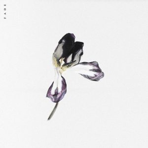 GILL CHANG & AVIELLA - Fade [frtyfve]